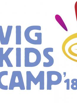 VIG Kids Camp 2018